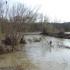 Поплаве – суше:  Пољопривредно земљиште – сунђер или бетон?